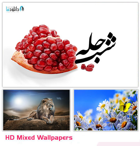 مجموعه ۲۶۰ والپیپر متنوع – HD Mixed Wallpapers