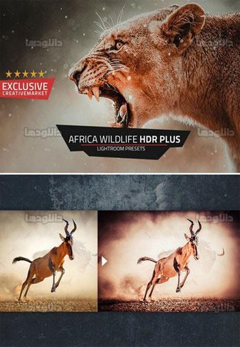 Africa-Wildlife-HDR-Plus