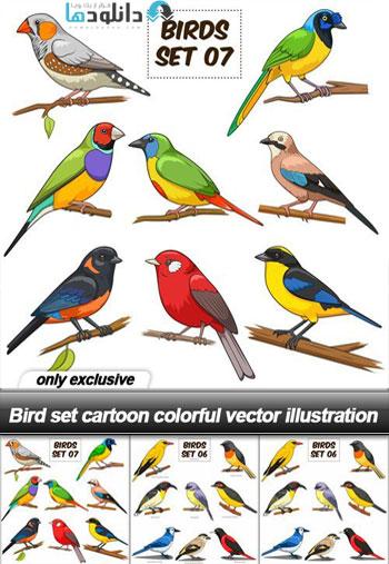 Bird set cartoon colorful vector illustration Vector  دانلود مجموعه Bird set cartoon colorful Vector