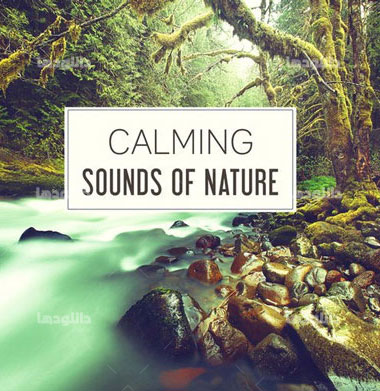 Calming-Sounds-of-Nature
