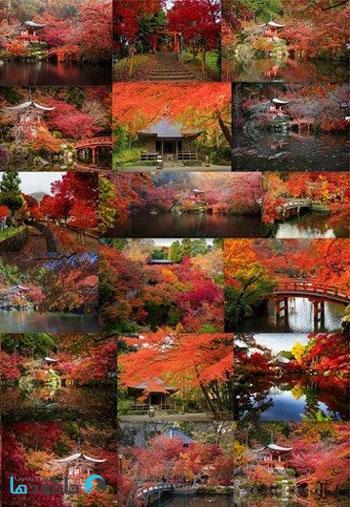 Daigo-ji-temple-in-autumn
