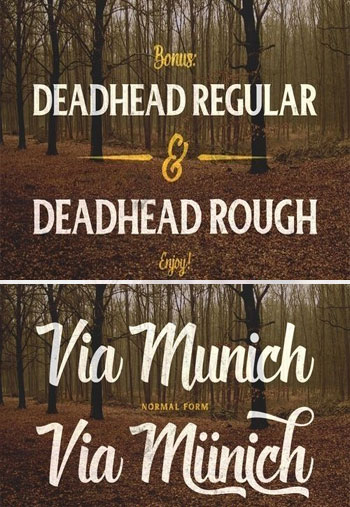 Deadhead-Script