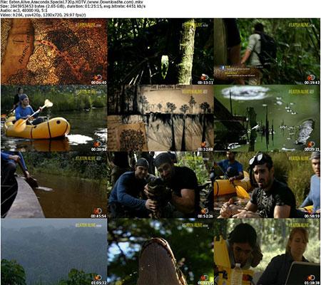 Eaten.Alive.Anaconda.Special.720p.HDTV.%28www.Downloadha دانلود مستند ۲۰۱۴ Eaten Alive Anaconda