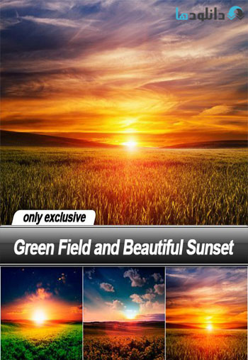 Green Field and Beautiful Sunset Stock دانلود مجموعه تصاویر شاتر استوک  Green Field and Beautiful Sunset Stock