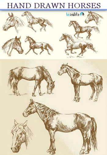 Hand-drawn-horses