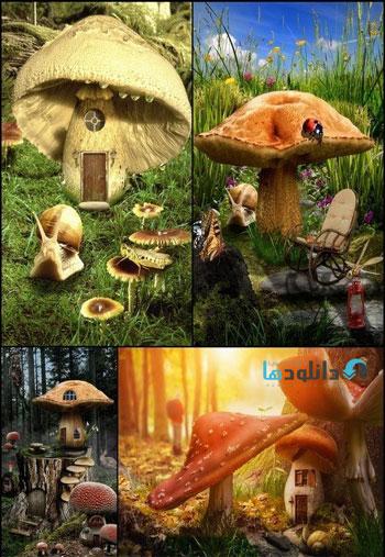 Mushroom-fairy-house