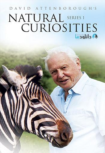 Natural Curiosities دانلود فصل اول  مستند Natural Curiosities 2013
