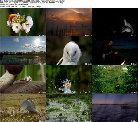Nature.Irelands.Wild.River. دانلود مستند NATURE: Irelands Wild River 2014