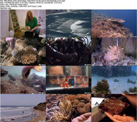 PBS.NOVA.2015.Lethal.Seas.7 دانلود مستند 2015 NOVA: Lethal Seas
