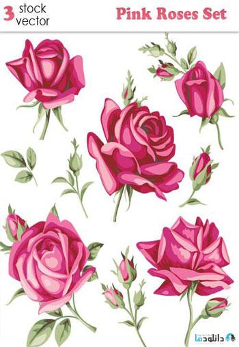 Pink-Roses-Set