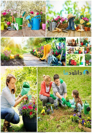 Planting-flowers-in-a-garden