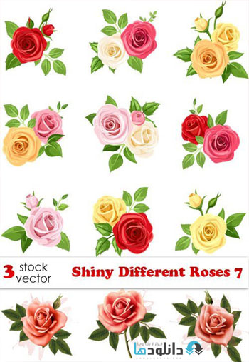 Shiny Different Roses 7 Vector  دانلود مجموعه Shiny Different Roses Vector
