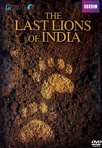 The Last Lions Of India دانلود فیلم مستند آخرین شیر های هند   2006 The Last Lions Of India