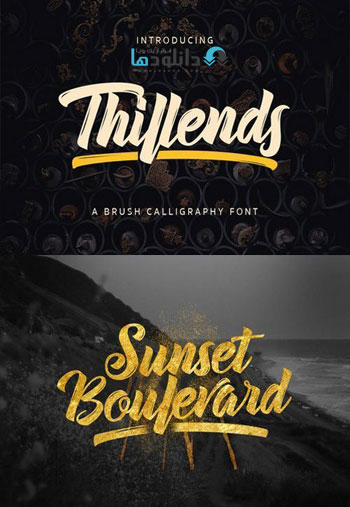 Thillends Script Fonts دانلود مجموعه فونت انگلیسی Thillends Font Family