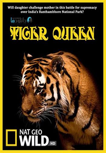 Tiger Queen دانلود مستند ببر ملکه NG Tiger Queen 2012
