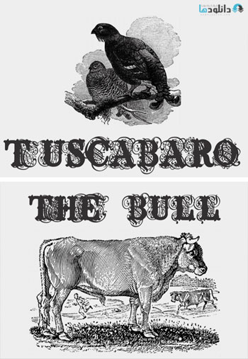 Tuscabaro