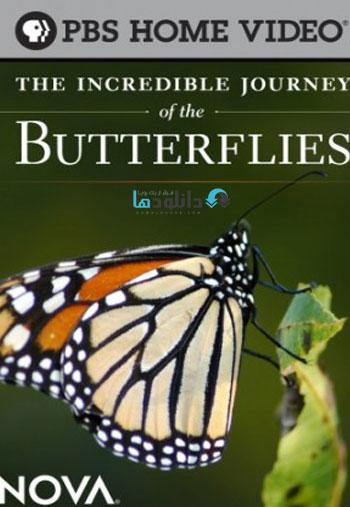 دانلود مستند سفر اعجاب انگیز پروانه ها – ۲۰۰۹ The Incredible Journey of the Butterflies