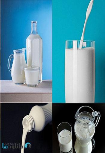 milk-shuter-stock