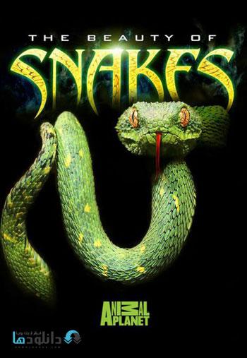 snake beauty  دانلود مستند زیبایی مارها   2003 The Beauty Of Snakes