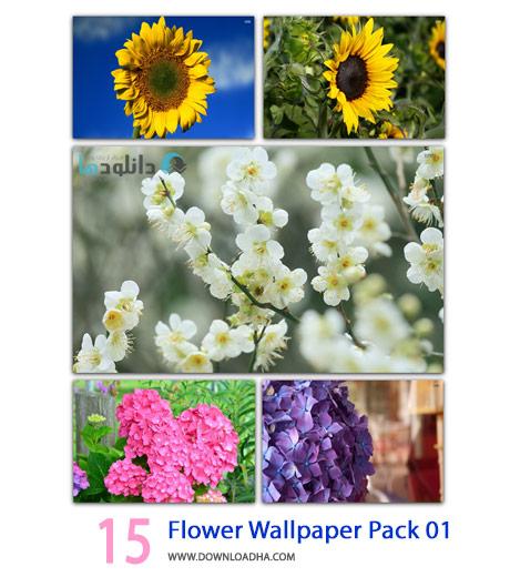 15 Flower Wallpaper Pack 01 Cover%28Downloadha.com%29 دانلود مجموعه 15 والپیپر با موضوع گل