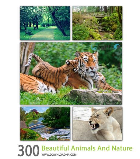 300 Beautiful Animals And Nature HQ Cover%28Downloadha.com%29 دانلود مجموعه 300 والپیپر از حیوانات و طبیعت با کیفیت HD