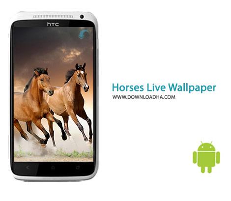 Horses Live Wallpaper Cover%28Downloadha.com%29 دانلود مجموعه والپیپر با موضوع اسب Horses Live Wallpaper 8.0 برای اندروید