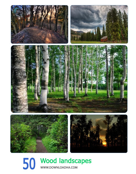 50 Wood landscapes Cover%28Downloadha.com%29 دانلود مجموعه 50 والپیپر جنگل