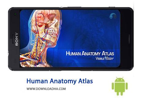 Human Anatomy Atlas Cover%28Downloadha.com%29 دانلود نرم افزار اطلس آناتومی بدن Human Anatomy Atlas 7.4.03   اندروید