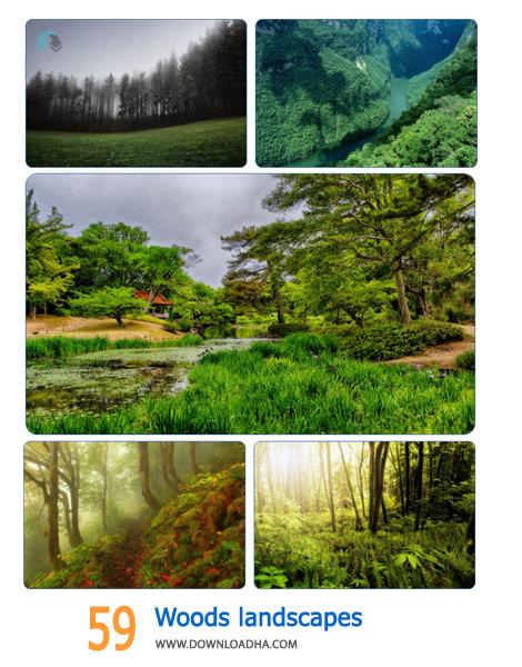 59-Woods-landscapes-Cover