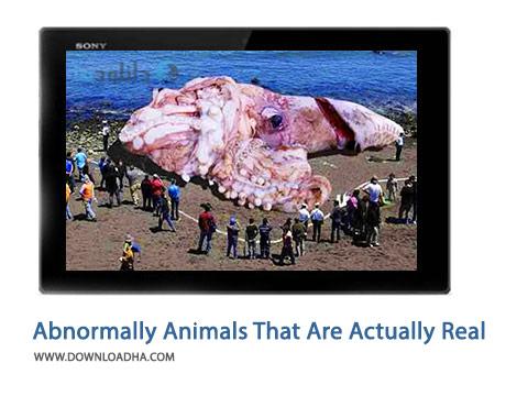 دانلود کلیپ حیوانات بزرگی که در دنیای واقعی وجود دارند