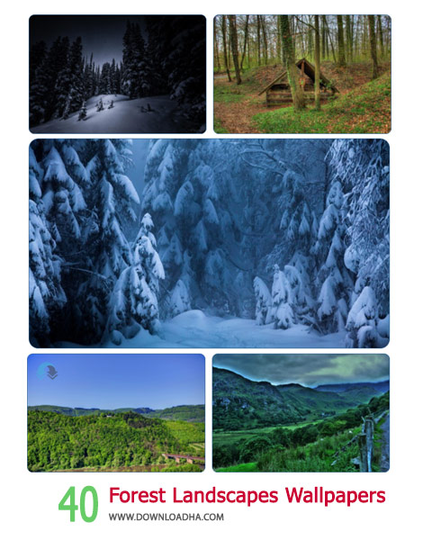 40 Forest Landscapes Wallpapers Cover%28Downloadha.com%29 دانلود مجموعه 40 والپیپر زیبا و عریض از جنگل ها