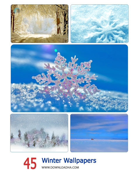 45-Winter-Wallpapers-Cover