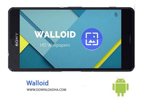 Walloid-Cover