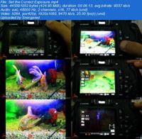 Simple guide to be a photographer ss s%28Downloadha.com%29 دانلود فیلم آموزش های ساده برای تبدیل شدن به یک عکاس حرفه ای
