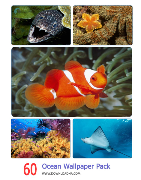 60 Ocean Wallpaper Pack 2 Cover%28Downloadha.com%29 دانلود مجموعه 60 والپیپر از اقیانوس ها