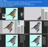 Turn a Photo into a Pattern Selection Filter Pattern Swatch ss s%28Downloadha.com%29 دانلود فیلم آموزش درج عکس در یک الگوی مشخص فتوشاپ