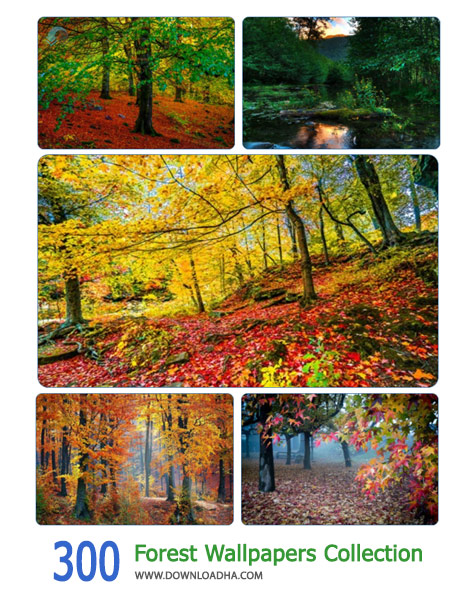 300 Forest Wallpapers Collection Cover%28Downloadha.com%29 دانلود مجموعه 300 والپیپر جنگل