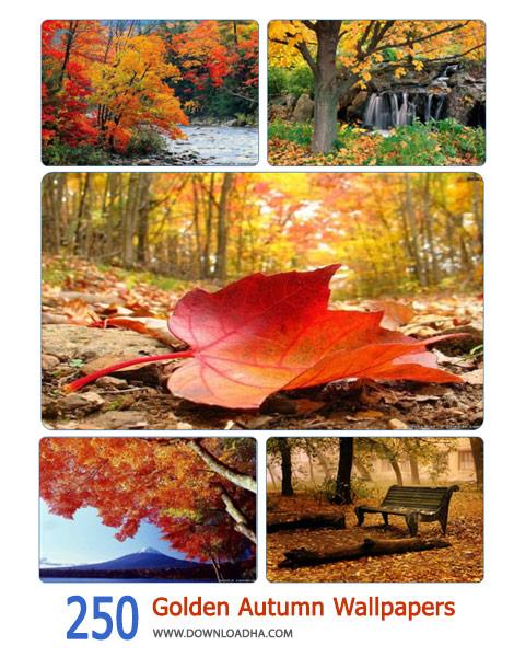250 Golden Autumn Wallpapers Cover%28Downloadha.com%29 دانلود مجموعه 250 والپیپر زیبا از پاییز