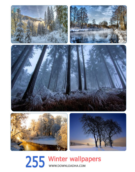 255-Winter-wallpapers-Cover