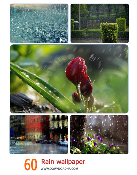 60-Rain-wallpaper-Cover