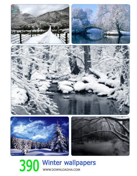 390-Winter-wallpapers-Cover