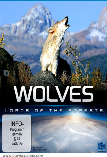 Wolves دانلود مستند گرگها Wolves – Lords of the Forests