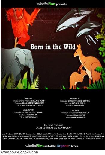 Born In The Wild دانلود مستند زاده ی حیات وحش Born in the Wild 2014