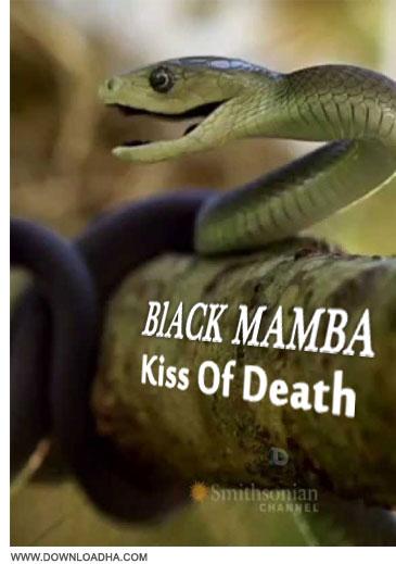 Kiss Of Death دانلود مستند بوسه ی مرگ Black Mamba: Kiss Of Death 2014