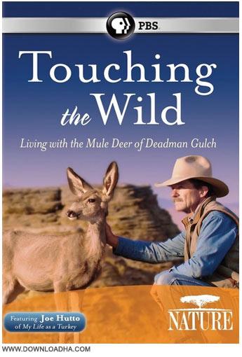 دانلود مستند لمس حیات وحش Nature: Touching the Wild 2014