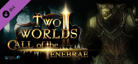 Two Worlds II Call of the Tenebrae-pc-cover
