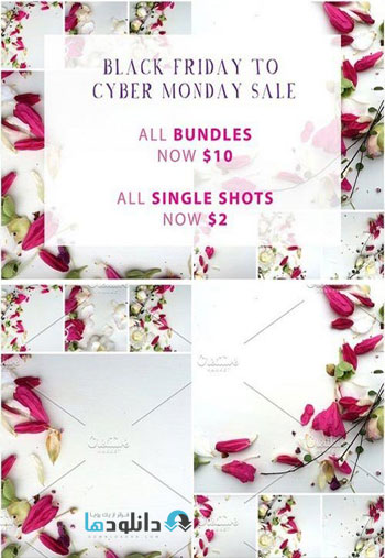 BUNDLES-OF-BLISS-Styled-Stock-Photos