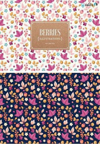 Berries-Illustrations