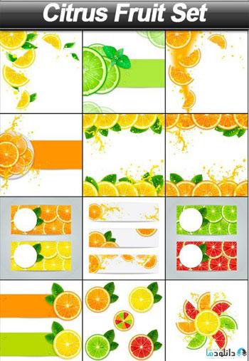 Citrus-Fruit-Set