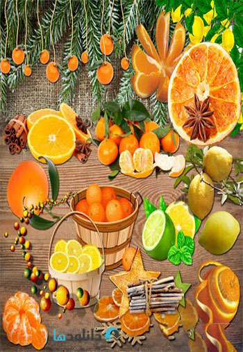 Citrus-fruit-on-a-transparent-background